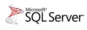managed sql hosting